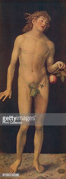 Adan' One of a pair of paintings by German artist Albrecht Durer According to creation myth Adam and Eve were the first man and woman and the...