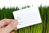 Address Book and green grass close up