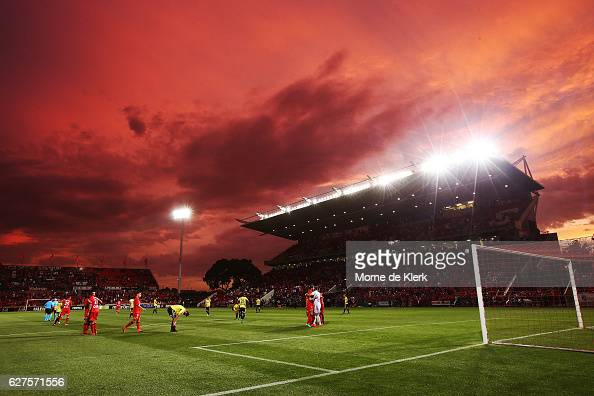 Adelaide players celebrate after winning the round nine ALeague match between Adelaide United and the Wellington Phoenix at Coopers Stadium on...