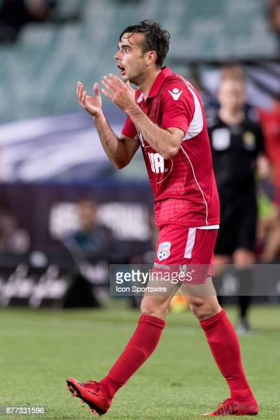Adelaide United forward Nikola Mileusnic unhappy with the decision at the FFA Cup Final Soccer between Sydney FC and Adelaide United on November 21...