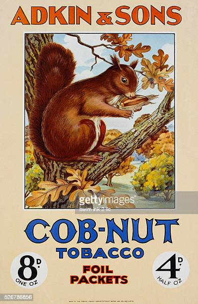 CobNut Tobacco Foil Packets Poster