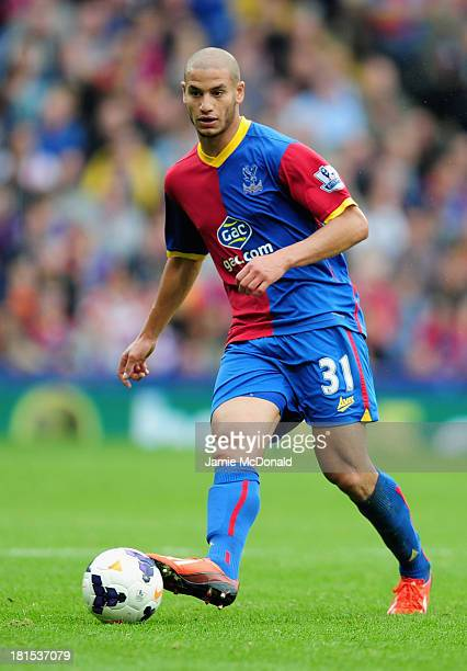 Adlene Guedioura of Crystal Palace in action during the Barclays Premier League match between Crystal Palace and Swansea City at Selhurst Park on...