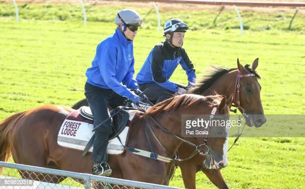 Admire Deus ridden by Craig Williams and Sixties Groove work at Werribee Racecourse on October 10 2017 in Werribee Australia