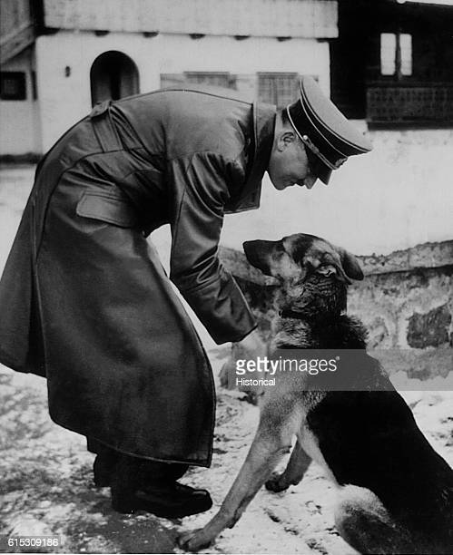 Adolf Hitler plays with a young German Shepherd dog at Berghof