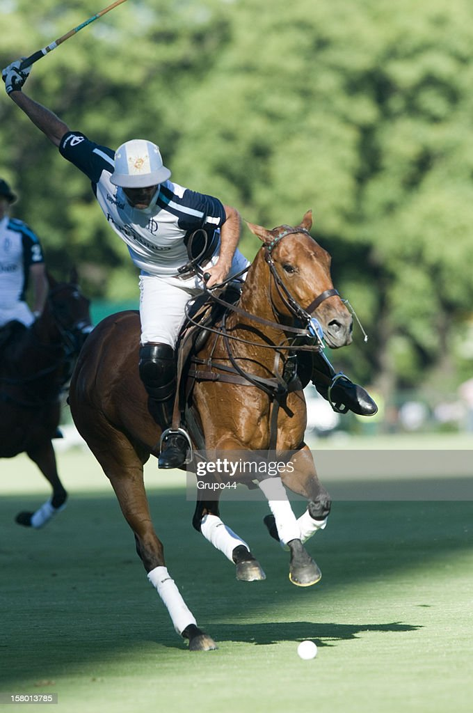 Adolfo Cambiaso of La Dolfina in action during a polo match between La Dolfina and Ellerstina as part of the 119th Argentina Open Polo Championship Final on December 08, 2012 in Buenos Aires, Argentina.