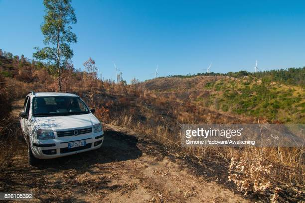 Adolfo Gustavo Berlingieri owner with his family of a large natural area in Crotone drives through his burnt wood on August 03 2017 in Crotone Italy...