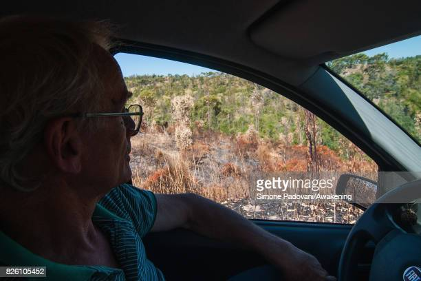 Adolfo Gustavo Berlingieri who owns a large natural area in Crotone with his family looks at the burnt wood on August 03 2017 in Crotone Italy An...