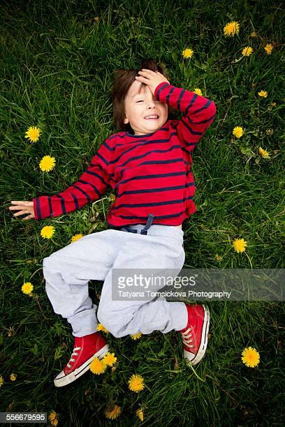 Adorable little boy, lying on the grass, dandelion