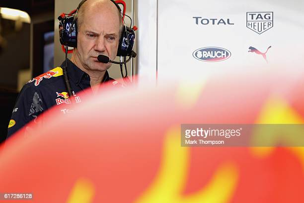 Adrian Newey the Chief Technical Officer of Red Bull Racing in the garage during qualifying for the United States Formula One Grand Prix at Circuit...