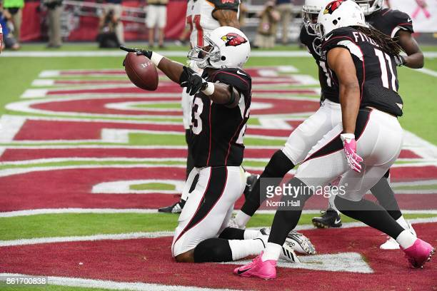 Adrian Peterson of the Arizona Cardinals celebrates in the endzone after a 27 yard rushing touchdown against the Tampa Bay Buccaneers during the...