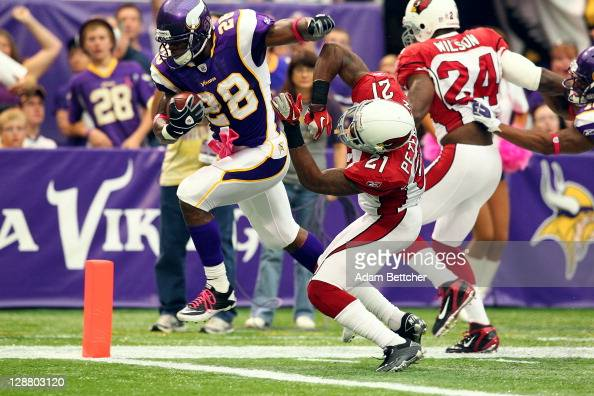 Adrian Peterson of the Minnesota Vikings scores a touchdown against Greg Toler of the Arizona Cardinals at the Hubert H Humphrey Metrodome on October...