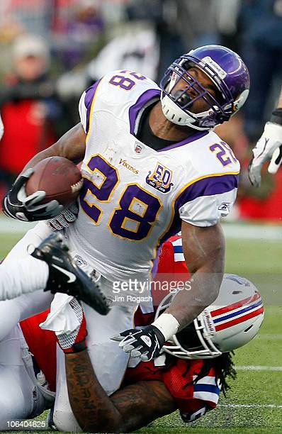 Adrian Peterson the Minnesota Vikings is stopped against the New England Patriots at Gillette Stadium on October 31 2010 in Foxboro Massachusetts