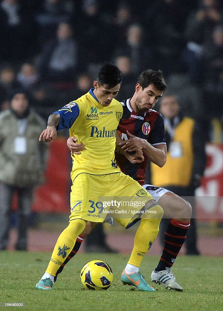 Adrian Stoian (L) of AC Chievo Verona competes for the ball with <a gi-track='captionPersonalityLinkClicked' href=/galleries/search?phrase=Gyorgy+Garics&family=editorial&specificpeople=4233673 ng-click='$event.stopPropagation()'>Gyorgy Garics</a> of Bologna FC during the Serie A match between Bologna FC and AC Chievo Verona at Stadio Renato Dall'Ara on January 12, 2013 in Bologna, Italy.