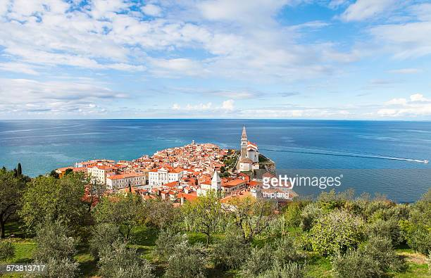 Adriatic sea view from castle, Piran