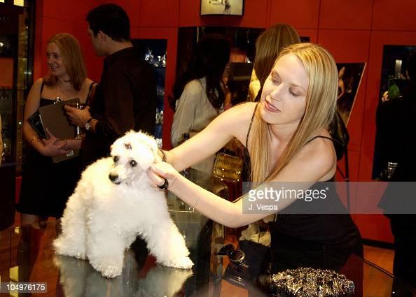 Adrienne Frantz during Vogue Takes Beverly Hills Daniel Swarovski Party at Daniel Swarovski Store at Hollywood Highland in Hollywood California...