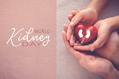 adult and child hands holiding red heart, World Kidney Day