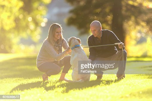 Adult couple playing with their dog in the park