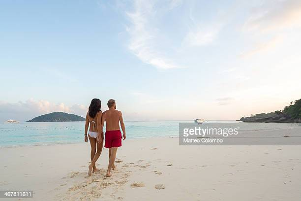 Adult couple walking hand in hand on a beach