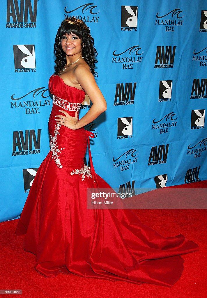 2008 adult award show las vegas