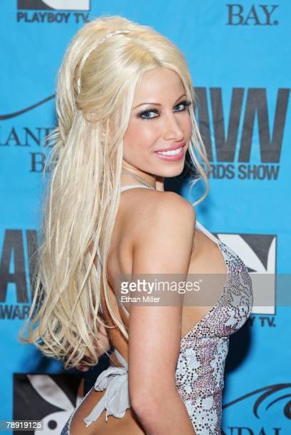 2008 famous adult film stars