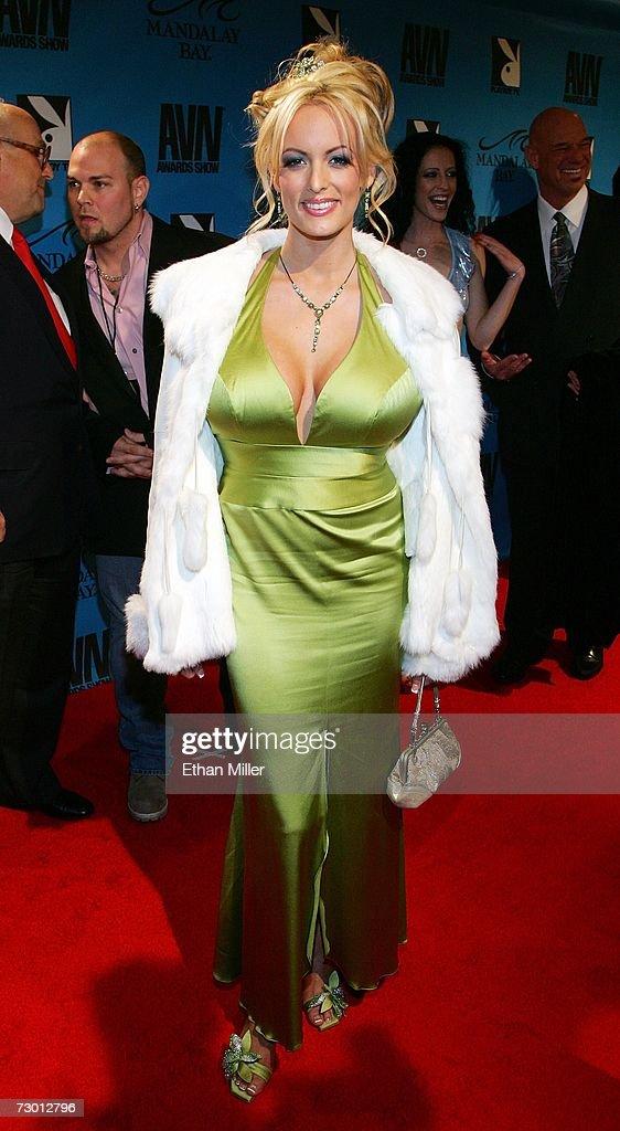 2007 adult film awards