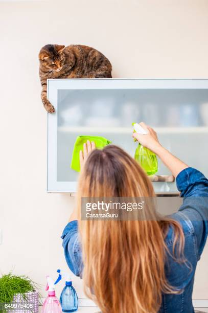 Adult Woman Playing With Cat While Cleaning The Kitchen