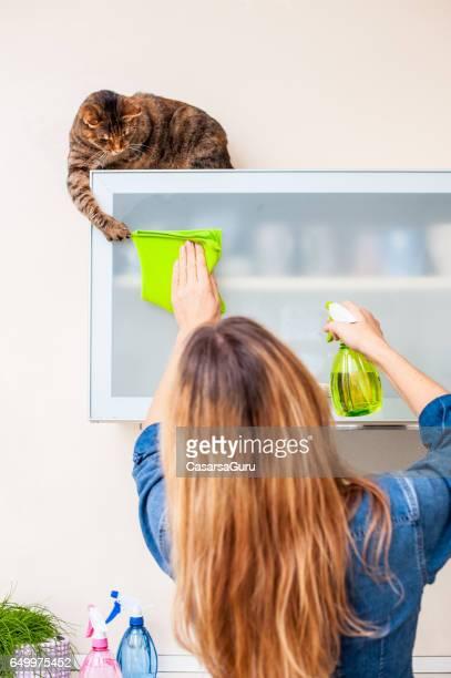 Erwachsene Frau spielt mit Katze beim Putzen der Küche