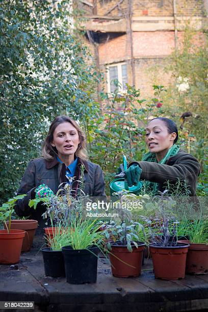 Adult Women Gardening in London City, Europe