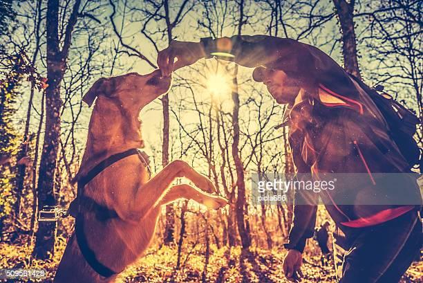 森の中での冒険:犬のリワード
