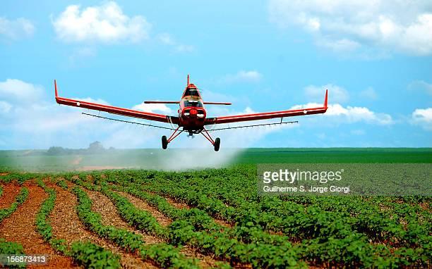 Aerial crop spraying on cotton