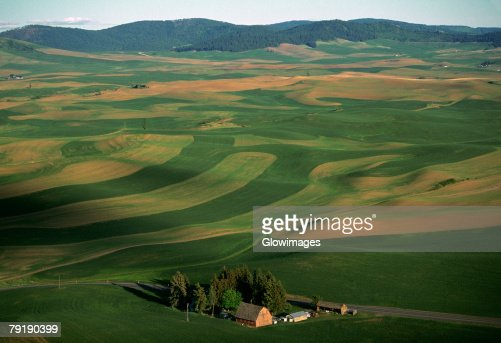 Aerial, farm country  : Stock Photo