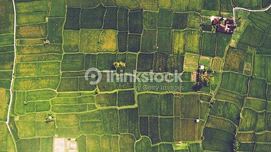 Aerial landscapes : Foto de stock
