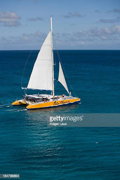 Aerial of catamaran Palm Pleasure