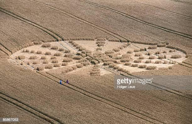 Aerial of crop circle.