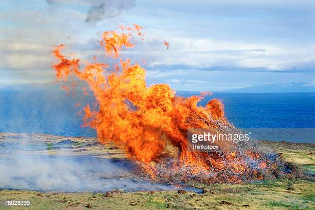 Aerial of large dancing flames of fire of dead tree branches near coast of Kahoolawe; Maui, Hawaii