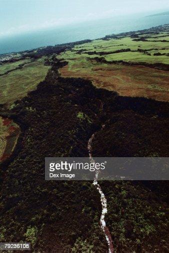 Aerial of lush green foliage, Big Island, Hawaii : Stock Photo