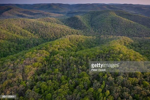 Aerial of Richland Creek Wilderness, Ozark Highlands Trail, Arkansas