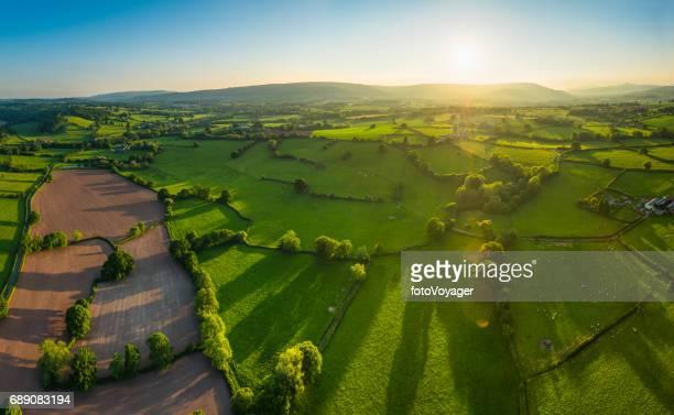 Aerial panorama sur champs vert été élevage pâturage golden sunset