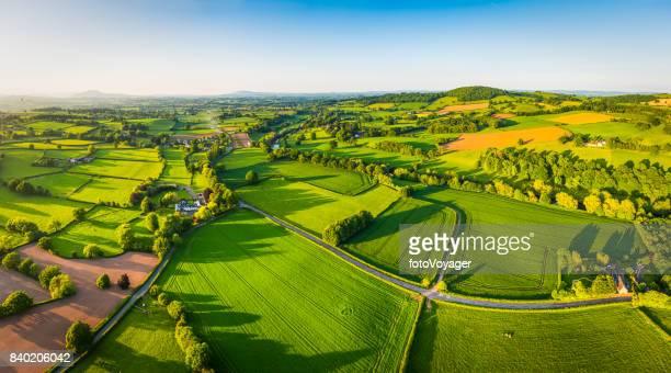 Aerial panorama idyllique été verte pâturage des récoltes des champs