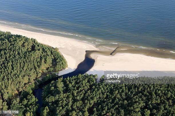 aerial photo of the beach