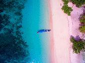 Aerial Pink Beach in Komodo Island