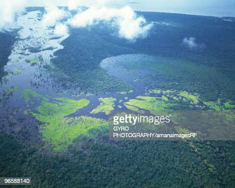 Aerial shot of Amazon forest