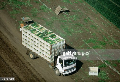 Aerial, truckload of harvested onions : Foto de stock