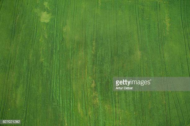 Aerial view by drone of the beautiful green countryside in the Catalonia region during the spring season.