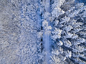 Aerial view of forest covered in deep powder snow.