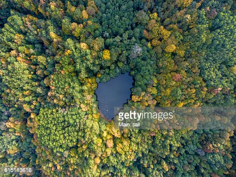 Aerial view. Forest lake in Russia. : Stock Photo