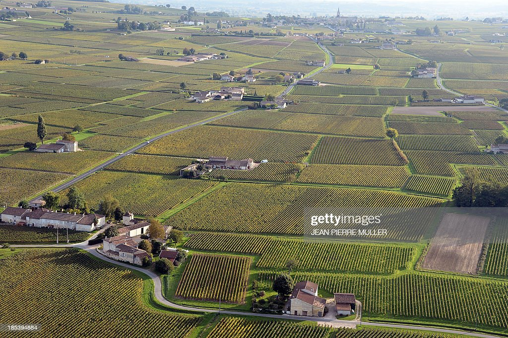 Aerial view from a hot air balloon shows vineyards surrounding the village of Saint Emilion on October 19, 2013.