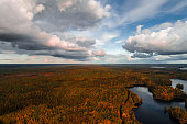 Aerial view from Liesjärvi National Park on an autumn afternoon with sun starting to go down, Finland