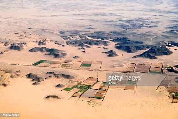 Aerial view Oasis and cultures in the desert alongside the Tassili Plateau in Lybia