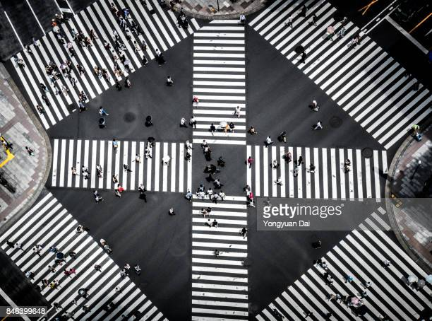 Aerial View of a Crossing in Ginza